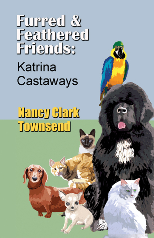 Katrina Castaways cover